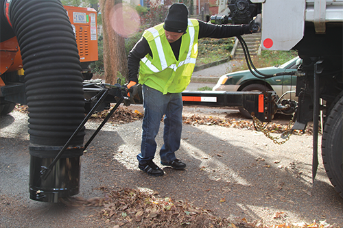 DPW Worker picking up leaves