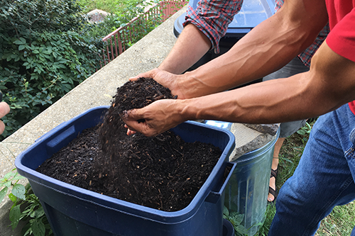 Man sorting through compost and dirt
