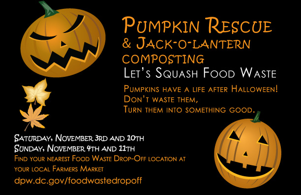 Pumpkin Rescue Flyer