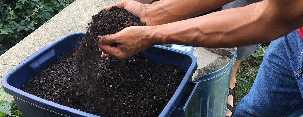 Picture of Compost Soil